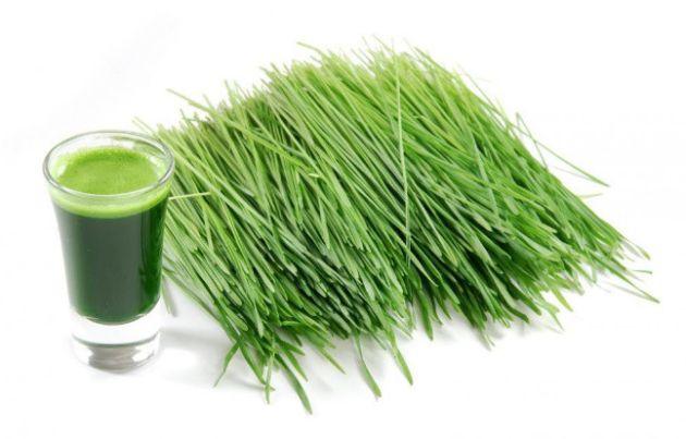 【Hình ảnh】 Cách gội đầu bằng cỏ lúa mì